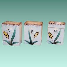 Mid-Century Salt, Pepper Shakers & Dry Mustard Jar