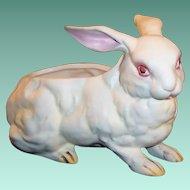 Vintage Lefton White Albino Bunny Rabbit Planter / Candy / Figurine H 3241