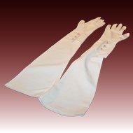 Meyers Make Opera Length Size 7 Formal Evening Gloves