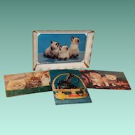 Mid Century Plastic Postcard Frame with 4 Kitten Postcards