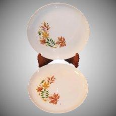 SET of 2:  Salem China Autumn Leaves Dinner Plates