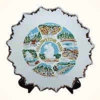 Yellowstone Park Souvenir Plate ~ Japan