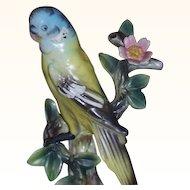 Ucagco Japan Paroquet Parakeet Budgie Figurine