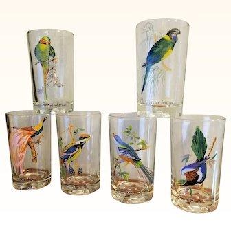 Exotic Birds 6 Piece Tumblers Beverage Glasses MIB Original Boxed Set