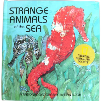 Pop Up Book Strange Animals Of The Sea - A National Geographic Action Book - Children's Interactive Book