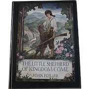 The Little Shepherd of Kingdom Come, N.C. Wyeth illustrator, 1st Ed., 1931