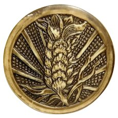 Button Very LARGE Tinted & Buffed Celluloid WHEAT Flower