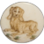 Button~Vintage Engraved Spaniel Dog Hand Painted