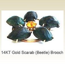 Rare Victorian Gold Scarab 5 Beetle Brooch Pin