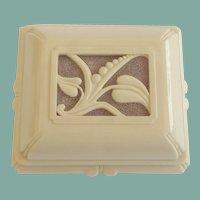 Large Vintage Art Deco Celluloid Jewelry Box Case Art Nouveau Florals