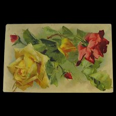 Artist Signed Post Card Roses by Catherine Kline Embossed 1909 Ex Condition