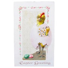 Easter Postcard Dressed Chick in Egg Germany Unused