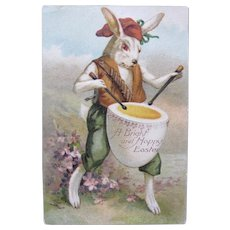 Easter Postcard Dressed Rabbit with Red Eyes Germany 1908