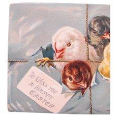 Vintage Easter Postcard with Chicks Tucks