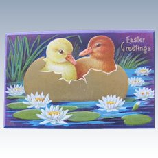 Easter Postcard Wincsh  Big Little Ducks Lily Pods