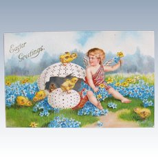 Easter Postcard Chromo  Cherub and Chicks Germany