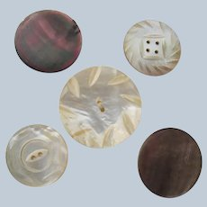 Mother of Pearl Large Antique Buttons Carved Five Perfect