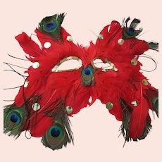 Feather Mask Costume Fun