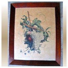Lovely Colored Print of Fruit, J. L. Prevost invenit, Ruotte Direxil