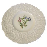 Lovely Floral Plate, Royal Cauldon, Woodstock, SPEEDWELL