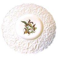 Lovely Floral Plate, Royal Cauldon Bristol Ironstone LADY'S SLIPPER