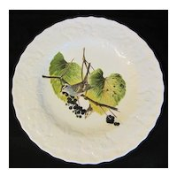 """Lovely Vintage Alfred Meakin Bird 9"""" Plate, WHITE CROWNED SPARROW #114"""