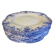 "Lovely Bone China Dinner Plate, DAINTY BLUE"" by Shelley (7 Available)"