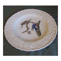 "Lovely Alfred Meakin Audubon 9"" Plate PASSENGER PIGEON"