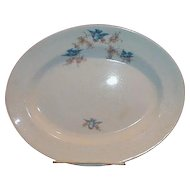 Lovely American Bluebird China Platter, Unmarked