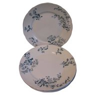 Set 5 Dinner Plates, CASTELAR, Green Transferware