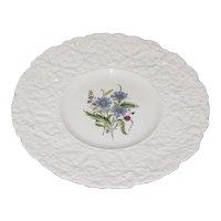 Lovely Floral Plate, Royal Cauldon, Woodstock, CORNFLOWERS