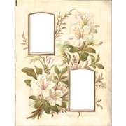Floral Page from Victorian Photo Album, Two CDV Openings, White Azaleas