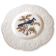 "Lovely 9"" Royal Cauldon Bird Plate, BLUE JAY"