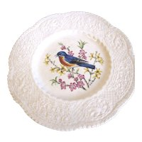 "Lovely Royal Cauldon 9"" Bird Plate, EASTERN BLUEBIRD"