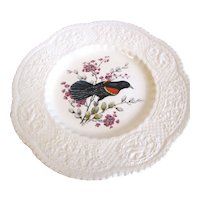 "Lovely 9"" Royal Cauldon Bird Plate, Redwinged Blackbird"