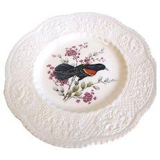 "Lovely 9"" Royal Cauldon Bird Plate, Redwinged Blackbird"