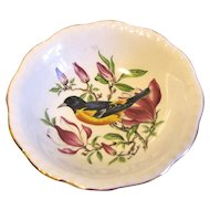Small Dish (Bowl) Royal Cauldon England BALTIMORE ORIOLE