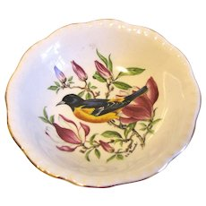 Small Dish (Bowl) Royal Cauldon England BALTIMORE ORIOLE