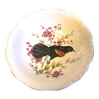 Small Dish (Bowl) Royal Cauldon England RED-WINGED Blackbird