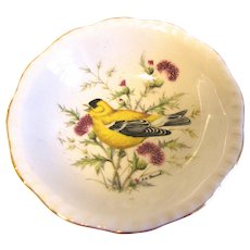 Small Dish (Bowl) Royal Cauldon England GOLDFINCH