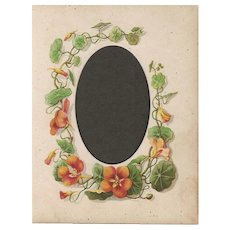 Page from Small Victorian Photograph Album, Nasturtiums