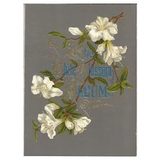 """Lovely Title Page from Victorian Photograph Album """"WHITE BLOSSOM"""""""