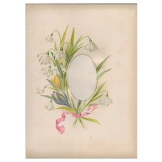 Lovely Page from Victorian Photograph Album, Bouquet of White Dew Drops and a Yellow Tulip