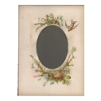 Lovely Page from Victorian Photograph Album, Pine Branches, Cones, and Birds
