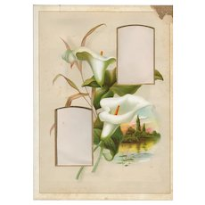 Lovely Page (Mat) from Victorian Photograph Album,  2 Carte-de-Visite Photo Openings