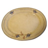 Popular Bluebird China Platter, The Colonial Pottery Co.