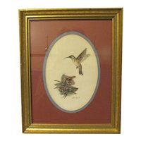 Beautifully Framed Hummingbird Print by Don Kent
