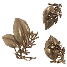 Vintage Signed Sarah Coventry Gold Tone Brooch/Pin & Earrings Set