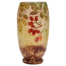 Daum Nancy Art Nouveau Rosehip Cameo Glass Vase C.1900
