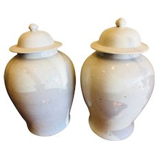 Pair of Large White Suzhou Ginger Jars